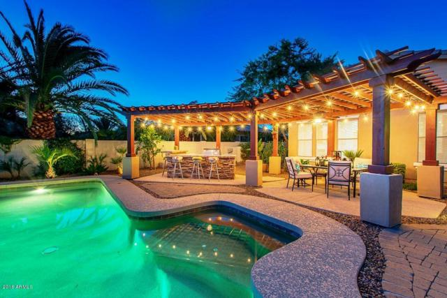 743 E Fieldstone Place, Chandler, AZ 85249 (MLS #5796064) :: Lux Home Group at  Keller Williams Realty Phoenix
