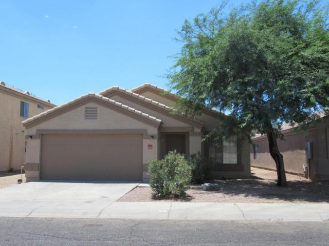 9005 W Avalon Drive, Phoenix, AZ 85037 (MLS #5796077) :: Lux Home Group at  Keller Williams Realty Phoenix