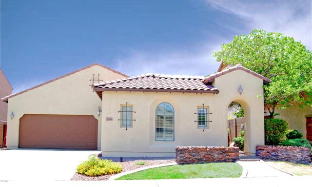 29446 N 125Thth Drive, Peoria, AZ 85383 (MLS #5796090) :: My Home Group