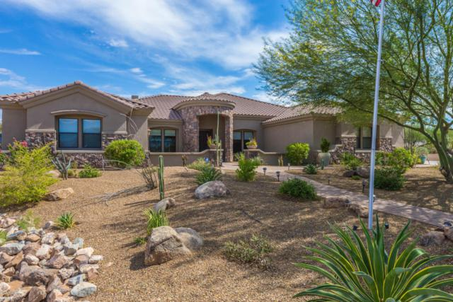 48 E Irvine Road, Phoenix, AZ 85086 (MLS #5796104) :: The Daniel Montez Real Estate Group