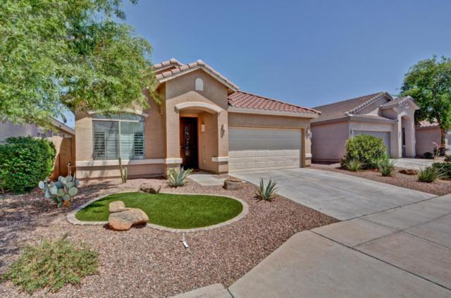 22427 N 102ND Lane, Peoria, AZ 85383 (MLS #5796115) :: Brent & Brenda Team