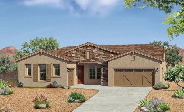 18426 W Goldenrod Street, Goodyear, AZ 85338 (MLS #5796122) :: Lux Home Group at  Keller Williams Realty Phoenix
