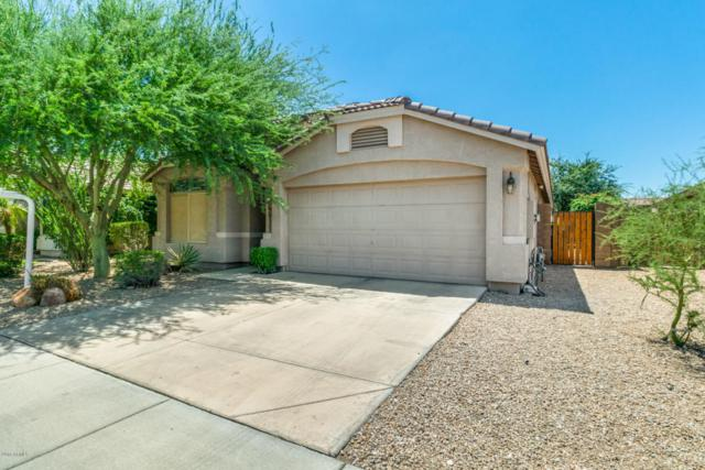 6511 W Chisum Trail, Phoenix, AZ 85083 (MLS #5796132) :: Team Wilson Real Estate