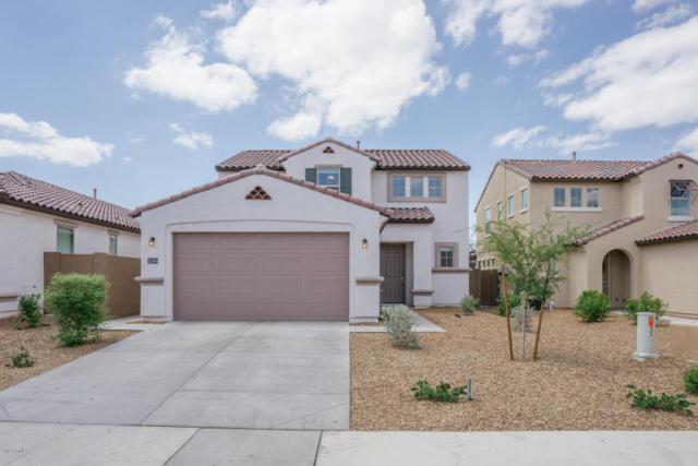 10189 W Los Gatos Drive, Peoria, AZ 85383 (MLS #5796136) :: The Results Group
