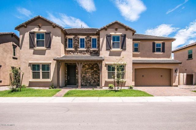 932 W Yosemite Drive, Chandler, AZ 85248 (MLS #5796170) :: The Garcia Group @ My Home Group