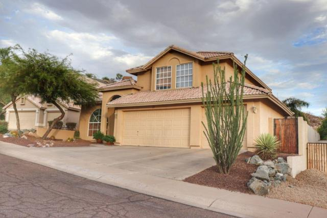 951 E South Fork Drive, Phoenix, AZ 85048 (MLS #5796173) :: The Daniel Montez Real Estate Group