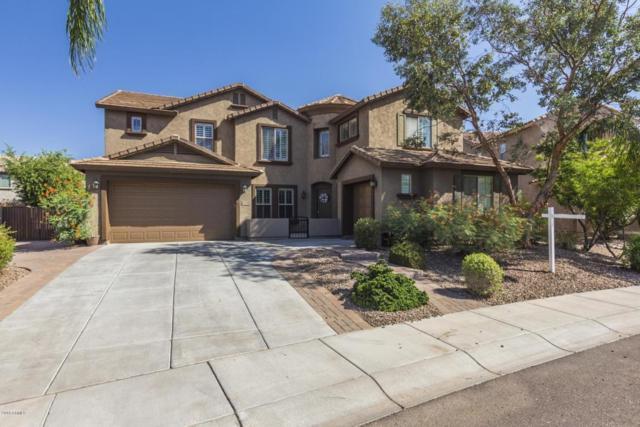 5622 W Andrea Drive, Phoenix, AZ 85083 (MLS #5796226) :: The Laughton Team