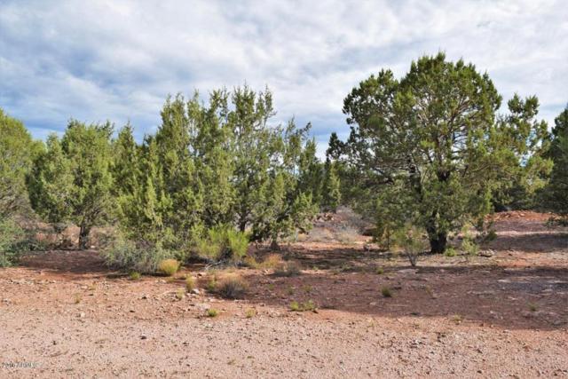 1211 N Earhart Parkway, Payson, AZ 85541 (MLS #5796242) :: Brett Tanner Home Selling Team