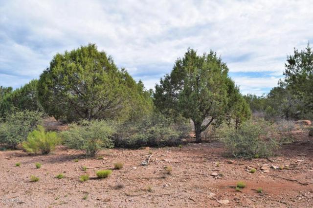 1213 N Earhart Parkway, Payson, AZ 85541 (MLS #5796249) :: Brett Tanner Home Selling Team