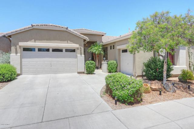 4502 E Zenith Lane, Cave Creek, AZ 85331 (MLS #5796268) :: Arizona Best Real Estate