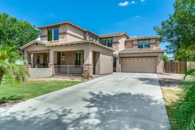 3250 E Blue Ridge Way, Gilbert, AZ 85298 (MLS #5796278) :: Riddle Realty