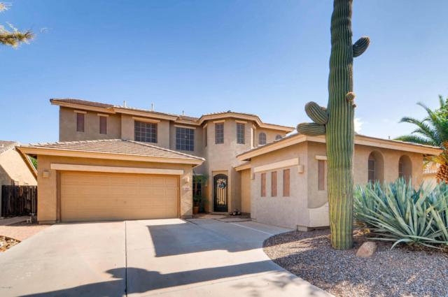 283 W Hawk Way, Chandler, AZ 85286 (MLS #5796325) :: Berkshire Hathaway Home Services Arizona Properties