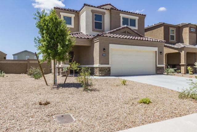 29923 W Mitchell Avenue, Buckeye, AZ 85396 (MLS #5796335) :: The Sweet Group