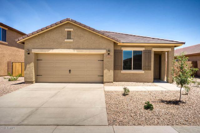 8706 S 253RD Avenue, Buckeye, AZ 85326 (MLS #5796358) :: The Sweet Group