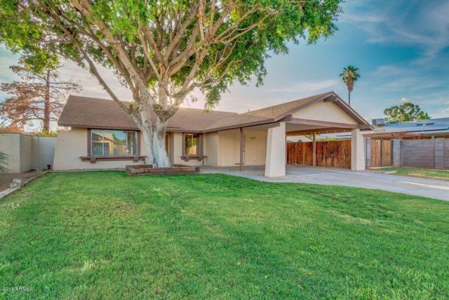 13426 N 24TH Avenue, Phoenix, AZ 85029 (MLS #5796372) :: Riddle Realty