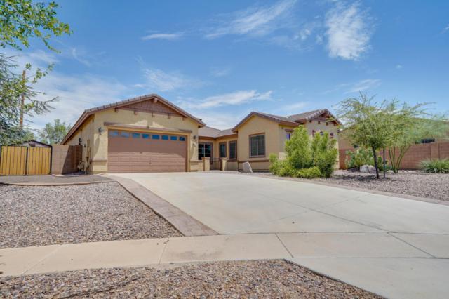 5971 S Mack Court, Gilbert, AZ 85298 (MLS #5796376) :: Berkshire Hathaway Home Services Arizona Properties