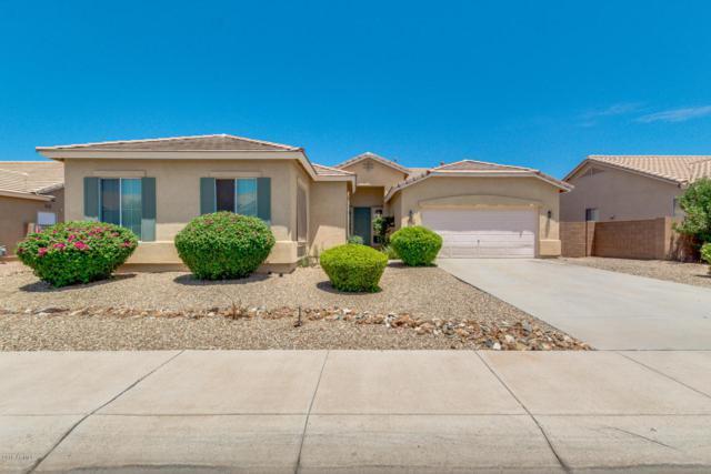 3334 W Latona Road, Laveen, AZ 85339 (MLS #5796390) :: Kelly Cook Real Estate Group