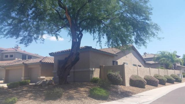 26617 N 44TH Street, Cave Creek, AZ 85331 (MLS #5796429) :: Arizona Best Real Estate