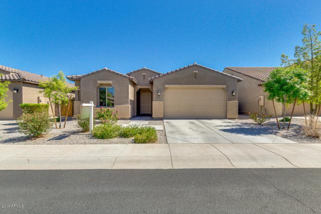 23637 W Hopi Street, Buckeye, AZ 85326 (MLS #5796441) :: The Sweet Group
