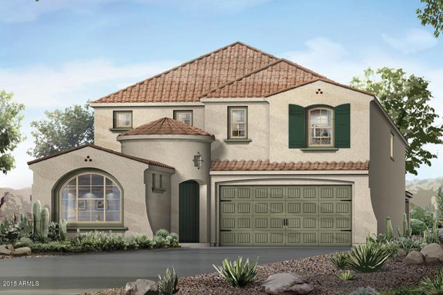 10513 E Sebring Avenue, Mesa, AZ 85212 (MLS #5796476) :: Berkshire Hathaway Home Services Arizona Properties
