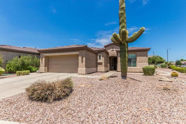4308 E Blue Spruce Lane, Gilbert, AZ 85298 (MLS #5796505) :: Berkshire Hathaway Home Services Arizona Properties