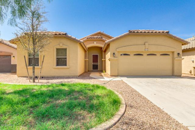 46023 W Morning View Lane, Maricopa, AZ 85139 (MLS #5796535) :: Team Wilson Real Estate
