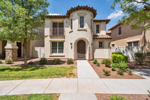 891 S Huish Drive, Gilbert, AZ 85296 (MLS #5796536) :: Berkshire Hathaway Home Services Arizona Properties