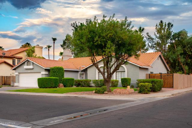 2301 E Egret Court, Gilbert, AZ 85234 (MLS #5796541) :: Berkshire Hathaway Home Services Arizona Properties