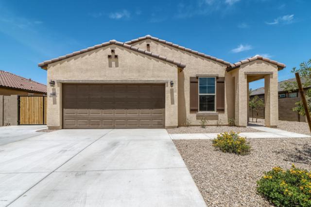 1688 E Primavera Way, San Tan Valley, AZ 85140 (MLS #5796543) :: The Bill and Cindy Flowers Team