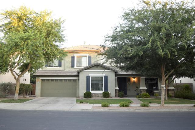 19159 E Macaw Drive, Queen Creek, AZ 85142 (MLS #5796550) :: Berkshire Hathaway Home Services Arizona Properties