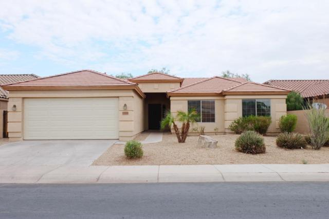 43506 W Harris Drive, Maricopa, AZ 85138 (MLS #5796564) :: Team Wilson Real Estate