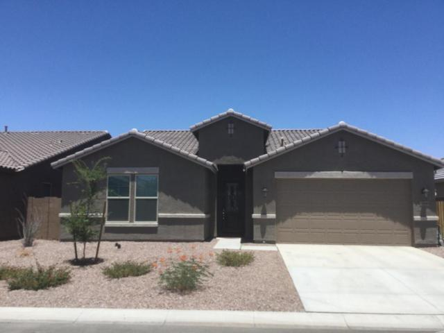 2006 W Rains Way, Queen Creek, AZ 85142 (MLS #5796593) :: Kelly Cook Real Estate Group