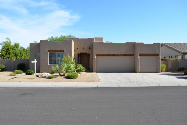 14647 W Wilshire Drive, Goodyear, AZ 85395 (MLS #5796598) :: The Sweet Group