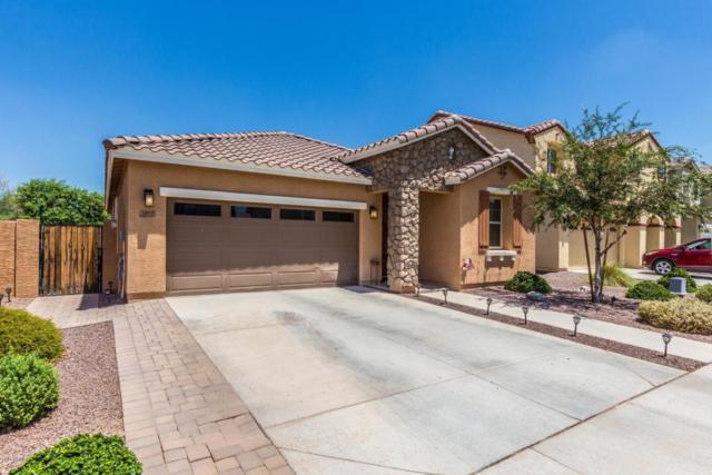3322 E Rochelle Street, Mesa, AZ 85213 (MLS #5796602) :: Team Wilson Real Estate