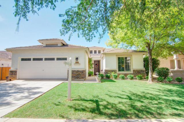3371 E Lexington Court, Gilbert, AZ 85234 (MLS #5796606) :: Yost Realty Group at RE/MAX Casa Grande
