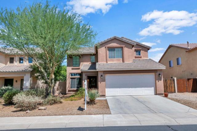 21024 N Sansom Drive, Maricopa, AZ 85138 (MLS #5796631) :: Team Wilson Real Estate