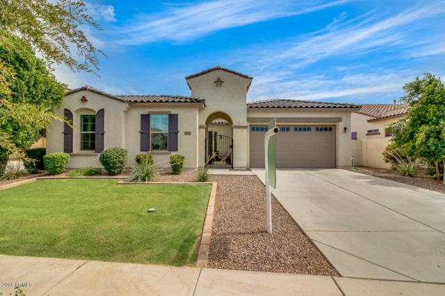 19427 E Apricot Lane, Queen Creek, AZ 85142 (MLS #5796668) :: Kelly Cook Real Estate Group