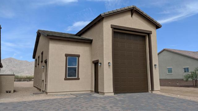 8432 N 194TH Drive, Waddell, AZ 85355 (MLS #5796689) :: Riddle Realty
