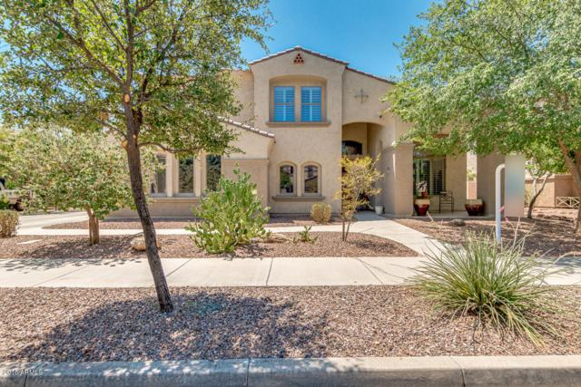 18653 E Caledonia Drive, Queen Creek, AZ 85142 (MLS #5796711) :: Kelly Cook Real Estate Group