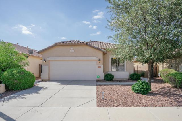 16635 N 169TH Avenue, Surprise, AZ 85388 (MLS #5796724) :: The Sweet Group
