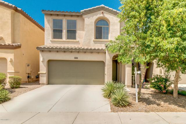 1636 W Lacewood Place, Phoenix, AZ 85045 (MLS #5796725) :: The Daniel Montez Real Estate Group
