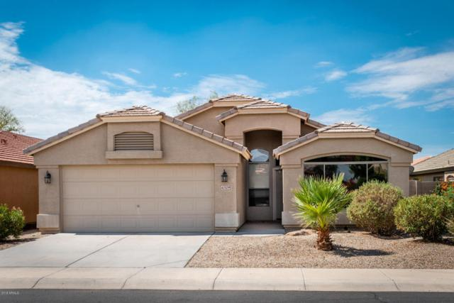 42329 W Sparks Drive, Maricopa, AZ 85138 (MLS #5796729) :: Team Wilson Real Estate