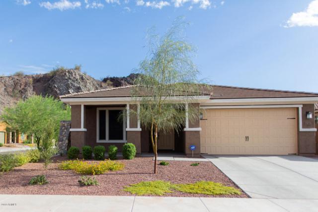10367 W Bajada Road, Peoria, AZ 85383 (MLS #5796730) :: Arizona Best Real Estate