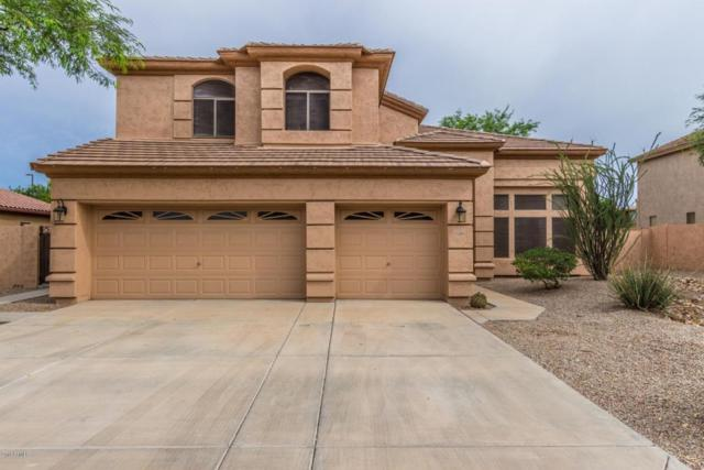 1359 E Harrison Street, Gilbert, AZ 85295 (MLS #5796741) :: CANAM Realty Group