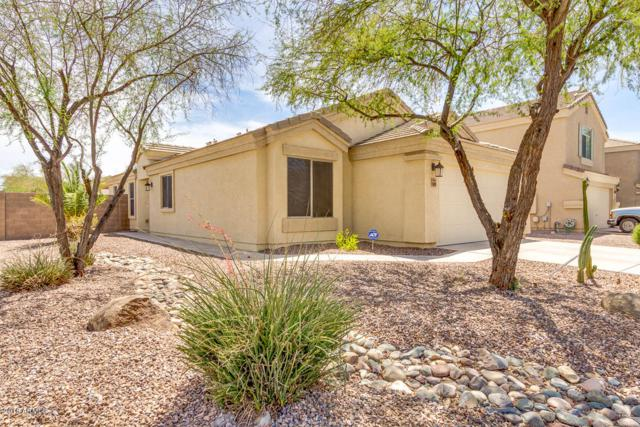 36509 W Nina Street, Maricopa, AZ 85138 (MLS #5796742) :: Team Wilson Real Estate