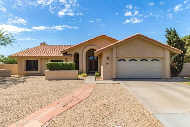 2555 N Tamarisk Street, Chandler, AZ 85224 (MLS #5796763) :: CANAM Realty Group