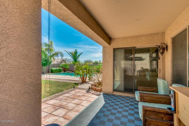11301 W Buchanan Street, Avondale, AZ 85323 (MLS #5796817) :: The Sweet Group
