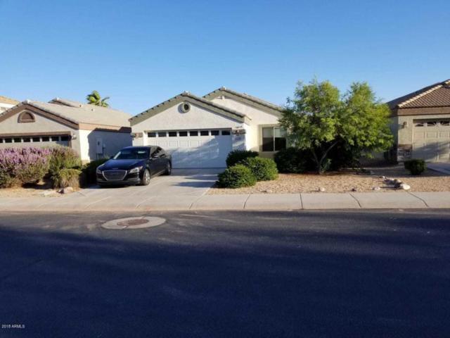 11839 W Port Royale Lane, El Mirage, AZ 85335 (MLS #5796824) :: Kelly Cook Real Estate Group