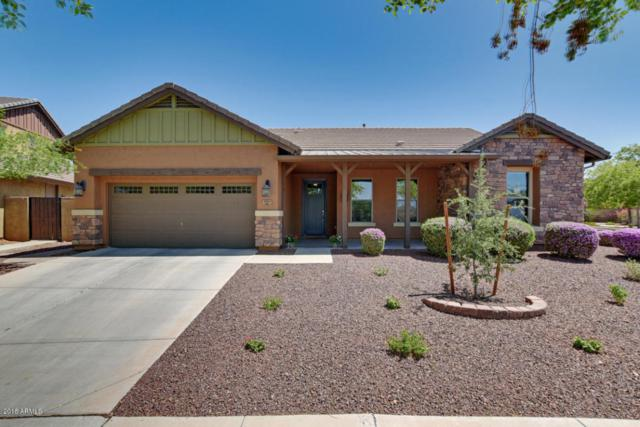 2941 N Riley Court, Buckeye, AZ 85396 (MLS #5796830) :: The Sweet Group