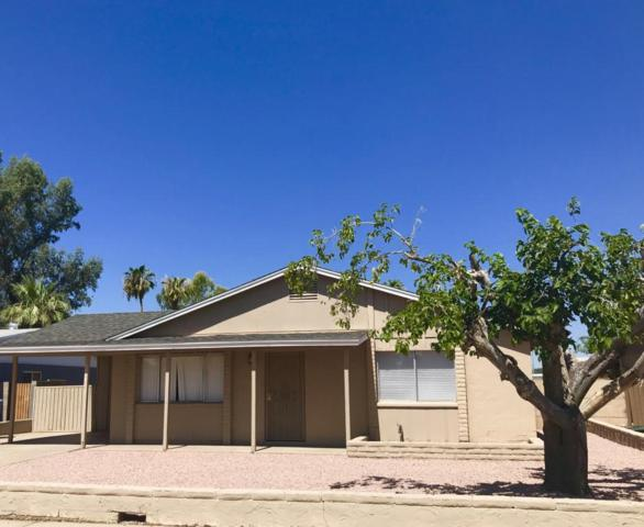 11444 N 44TH Avenue, Glendale, AZ 85304 (MLS #5796850) :: The Laughton Team